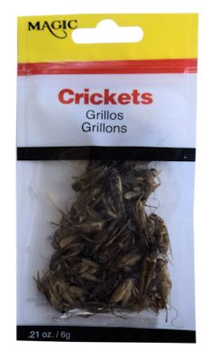 Magic Crickets Pouch